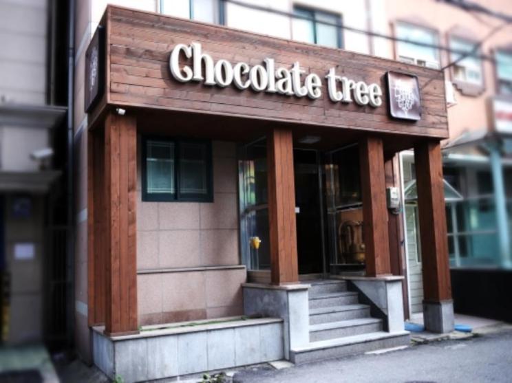 Chocolate Tree Hostel