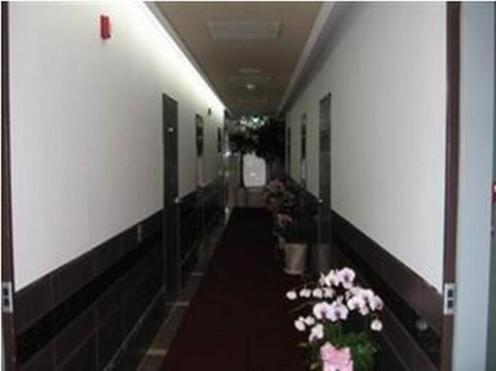 Shinchon S and T Guest House