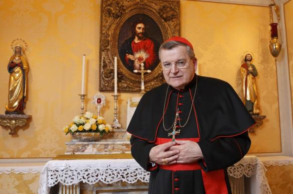 Raymond Leo, Cardinal Burke, Prefect Emeritus of the Supreme Apostolic Signatura, Cardinal Patron of the Sovereign Military Order of Malta