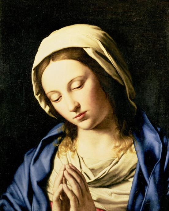Blessed Mother Pray for Us! Enter your prayer intentions so Catholic Moms can pray for you.