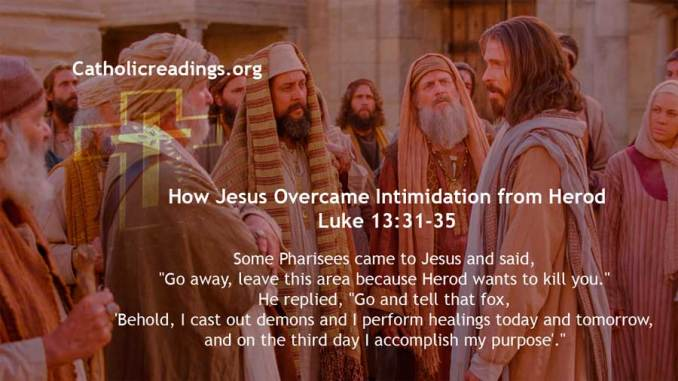 How Jesus Overcame Intimidation from Herod - Luke 13:31-35 - Bible Verse of the Day