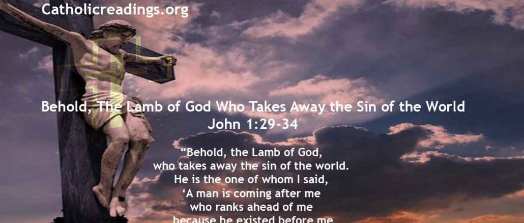 Behold, The Lamb of God Who Takes Away the Sin of the World - John 1:29-34 - Bible Verse of the Day