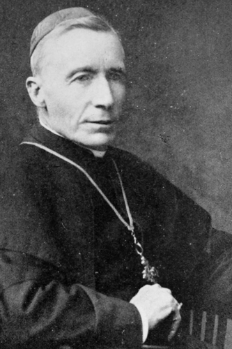 photograph of Cardinal James Gibbons taken no later than 1915, location and photographer unknown; swiped from Wikimedia Commons