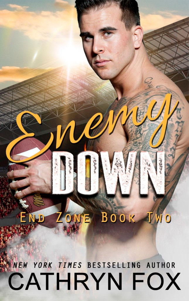 Book Cover: Enemy Down