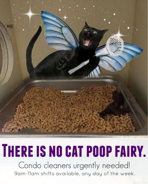 poop fairy