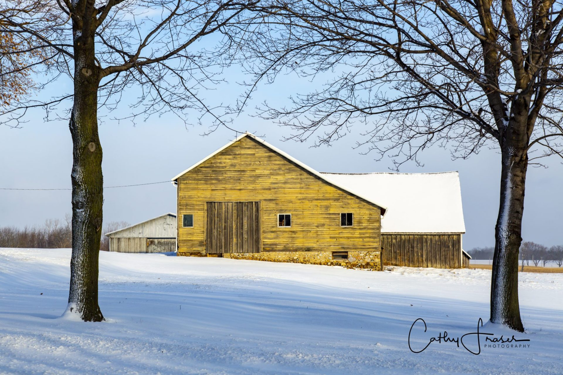 Landscape Photography of a yellow barn shown inbetween two trees in the wintertime in Upstate New York