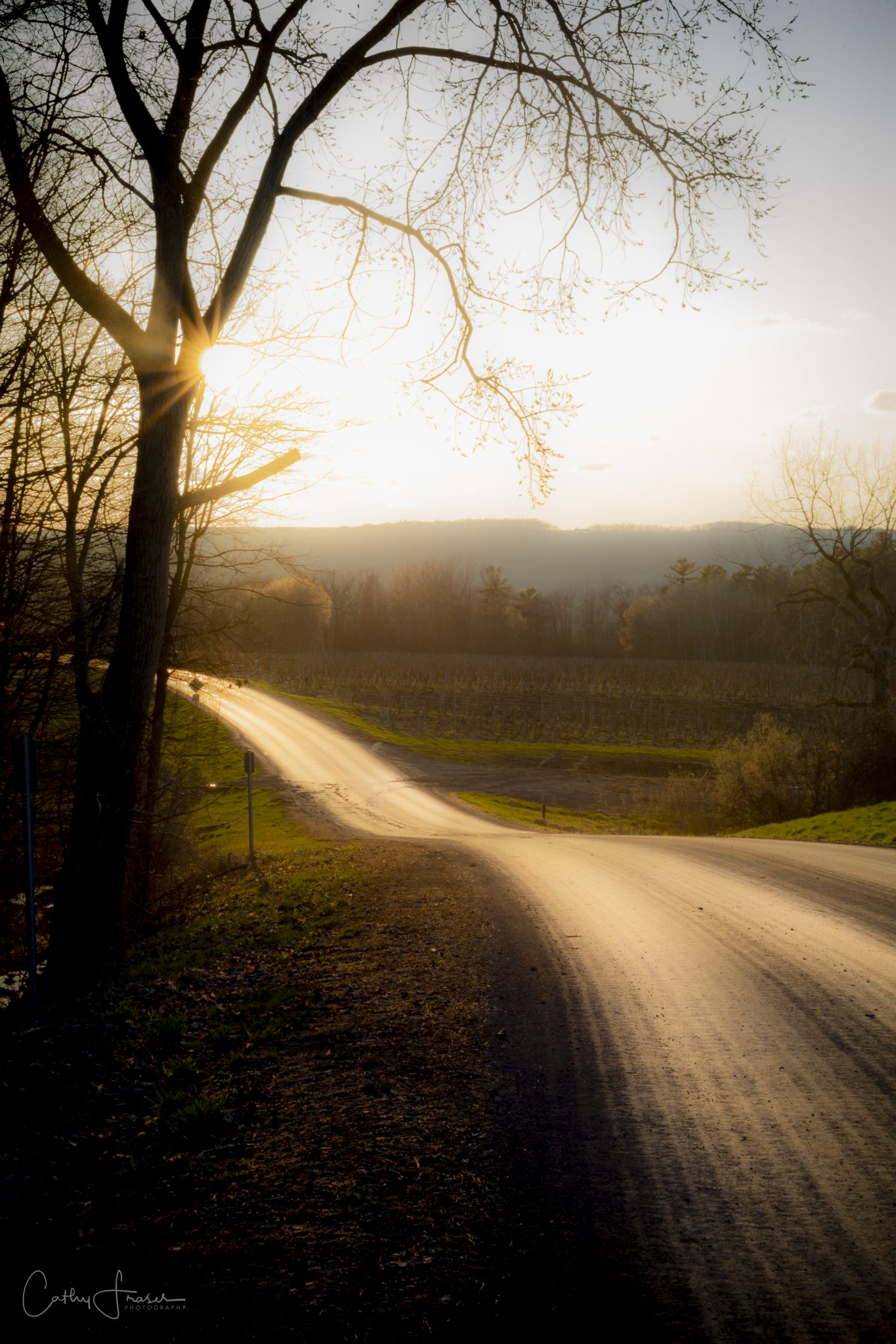 landscape photography of an empty road at sunset in keuka new york