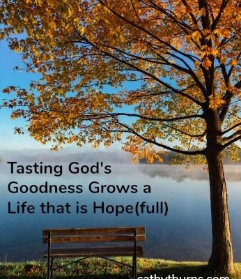 To Taste God's Goodness We Must First Have a Taste for God  Part 3