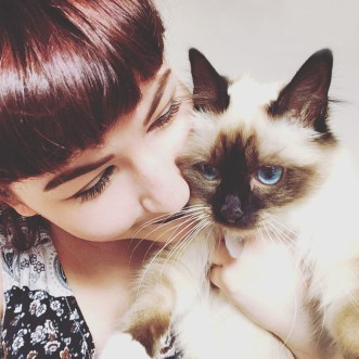A cat sitter can be a great alternative to cat boarding