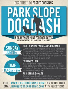 Park Slope Dog Dash