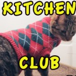 Cats In Fridges Support Group