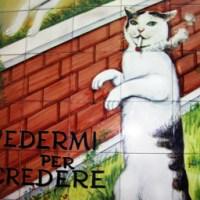 The Smoking Cat of Italy