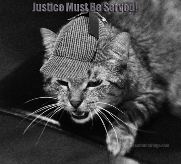 I demand justice and will stop at nothing!