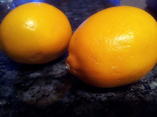 Don't use lemons in a cat's immediate area - they're sensitive to citrus.