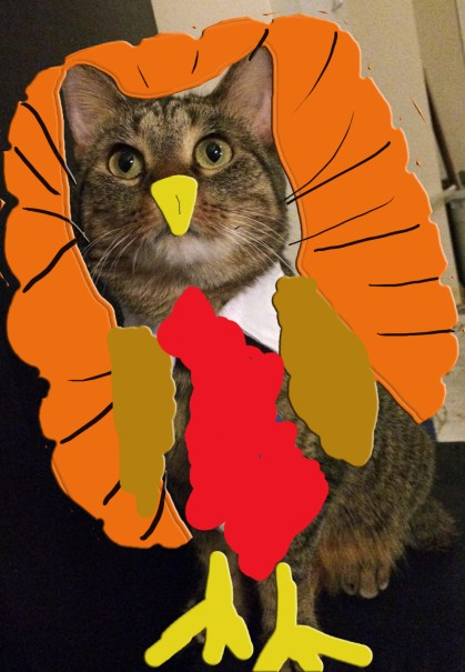 Were I a bird, I would fly to thee - Unless I were a turkey. Then I couldn't fly anywhere.