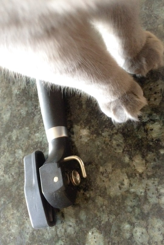 The Can Opener:  A Must Have for Resscues and The Already Rescued, Well-Fed House Cat