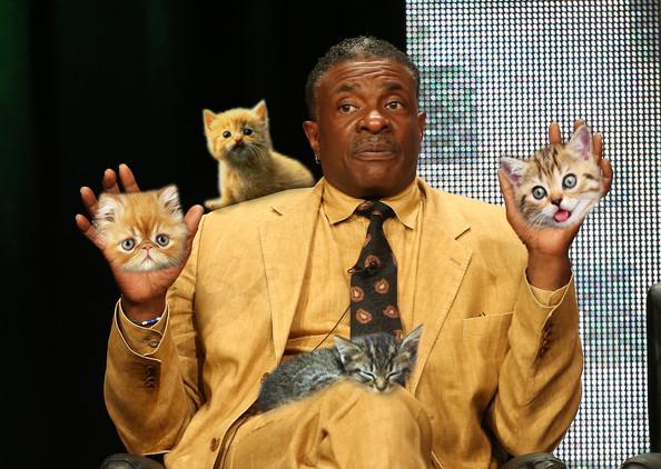 Keith David cats