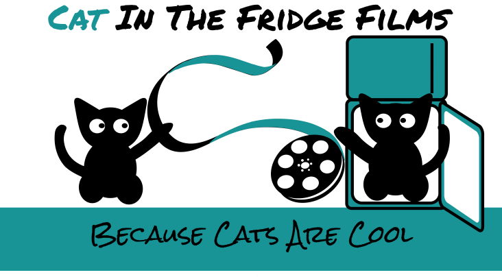 cats playing with film reel