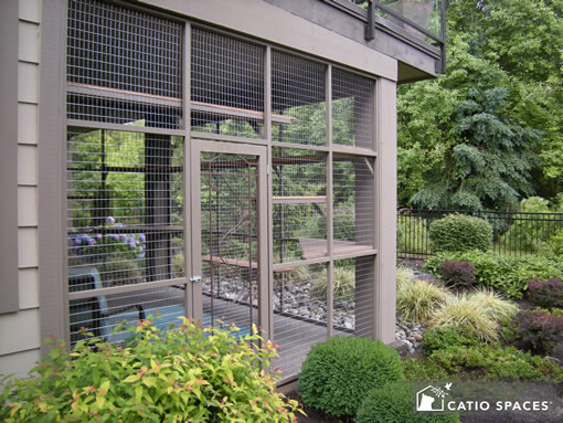 all about catios cat enclosures