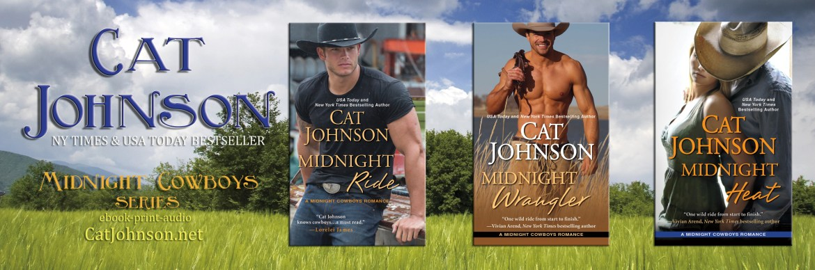 Midnight Cowboys Series by Cat Johnson