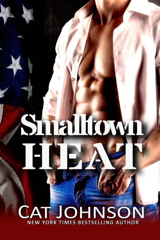 Book Cover: Smalltown Heat
