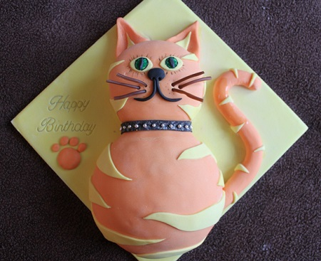 Ginger Cat Cake Decorations