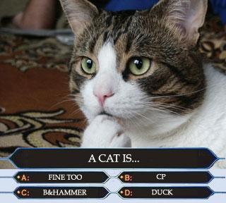 jeopardy_millionaire_fine_too_lol_cat_macro