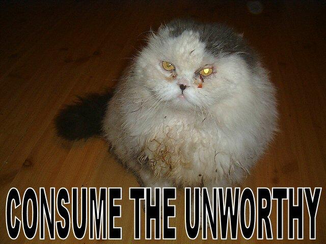 consume the unworthy catholics metaphrastes prayer lol cat macro