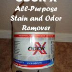 ODOR-X All-Purpose Stain and Odor Remover Review