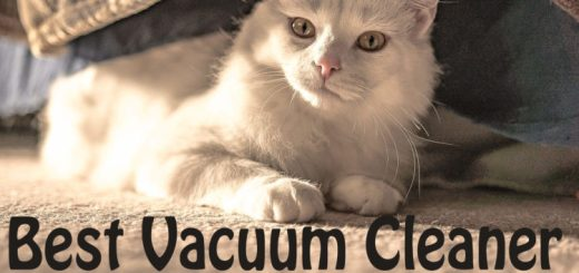 Best Vacuum Cleaner for Cat Hair