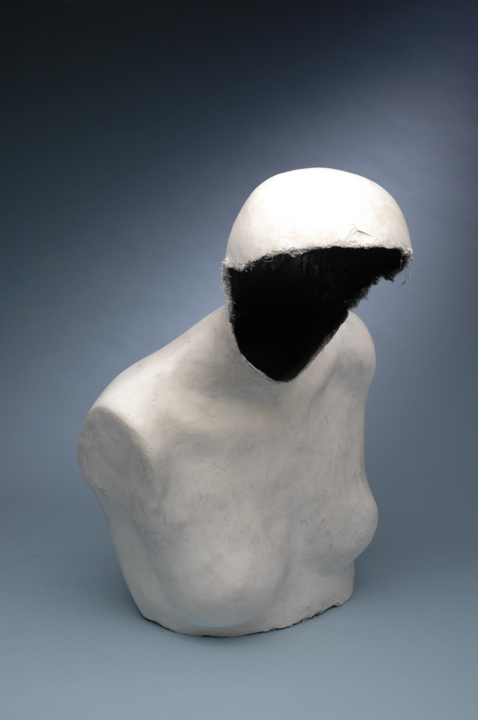 Experimental Figure 1