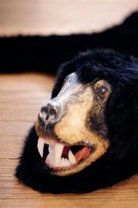 BearRug11