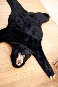 BearRug16
