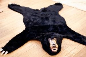 BearRug17
