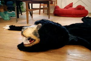 BearRug19