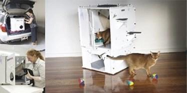 Kits 4 Cats - Catmax