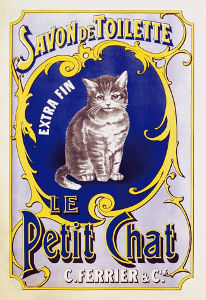 French Cat Names Female