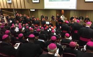 Los católicos no pueden aceptar elementos de la exhortación del Papa que amenazan la fe y la familia