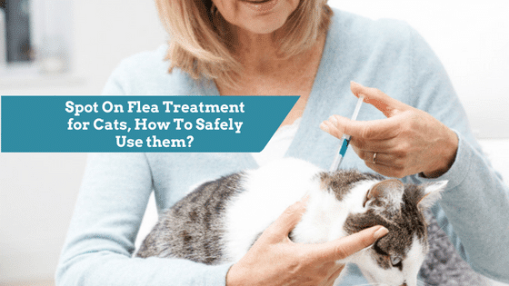 best spot on flea treatment for cats