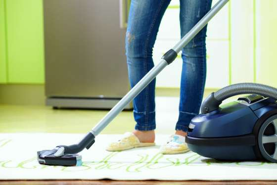 vacuum for flea free home