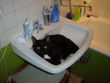 Ghis lavabo