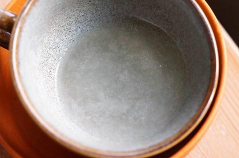 gel d'aloë vera mixé