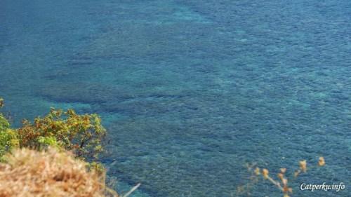 Amed punya banyak titik penyelaman dan snorkeling yang harus di eksplore para underwater travel junkie, termasuk saya. Ketika masih tinggal di Bali, tempat itu adalah tempat reguler saya untuk ber-snorkeling ria. Sebut saja Japanese Shipwreck point, Lipah dan Jemeluk Bay yang merupakan beberapa titik snorkeling dan diving populer di Amed, Bali Timur. (Ada surga bawah laut di bawah sana)