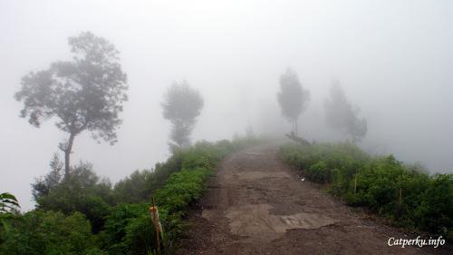 Kali ini muncul kabut tebal di Desa Ngadas setelah hujan deras.