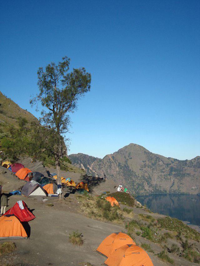 Deretan tenda pendaki di Plawangan Sembalun