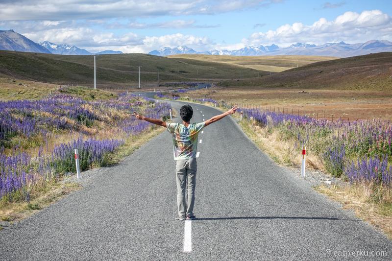 Sepanjang Jalan Di New Zealand adalah distraksi yang sebenarnya. Pengennya sih selalu berhenti buat foto :D