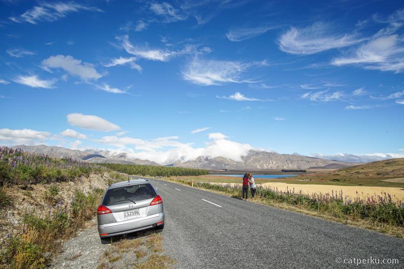 Tips hemat road trip di NZ adalah, beli BBM ketika nemu harga yang murah!