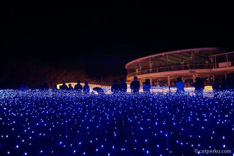 Ada jutaan lampu LED memenuhi tempat ini.