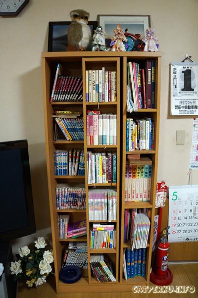 Komik, Majalah, tapi semuanya berbahasa Jepang :| *ga bisa baca*