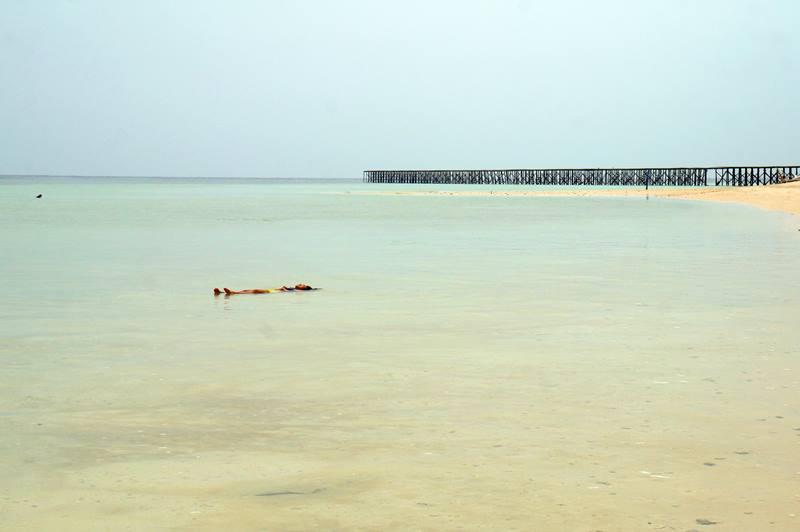 Atau berang-renang lucu di dekat Dermaga Pulau Sangalaki juga bisa